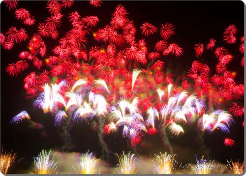 25 500x358 【大曲全国花火競技大会2013】花火デート事前リサーチGET!今年の優勝者は!?